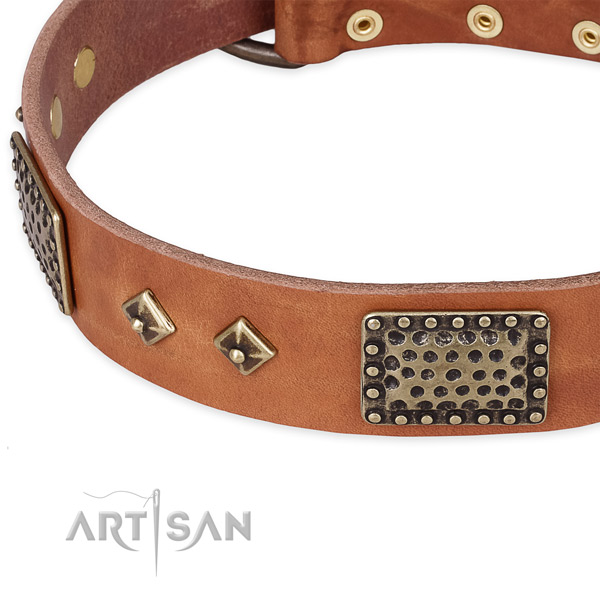 Rust resistant embellishments on natural leather dog collar for your doggie