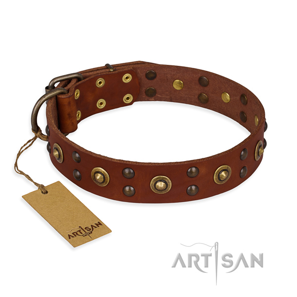 Adorned full grain genuine leather dog collar with reliable D-ring