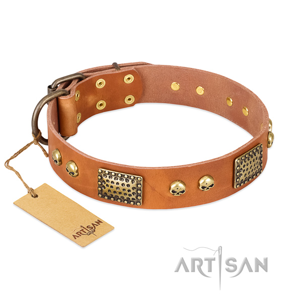 Easy to adjust full grain leather dog collar for stylish walking your four-legged friend