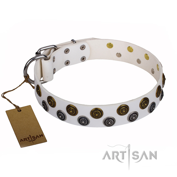 Basic training dog collar of finest quality leather with studs