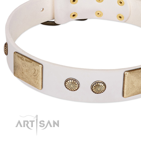Corrosion proof embellishments on natural leather dog collar for your pet