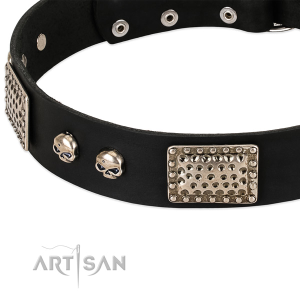 Reliable embellishments on natural genuine leather dog collar for your pet