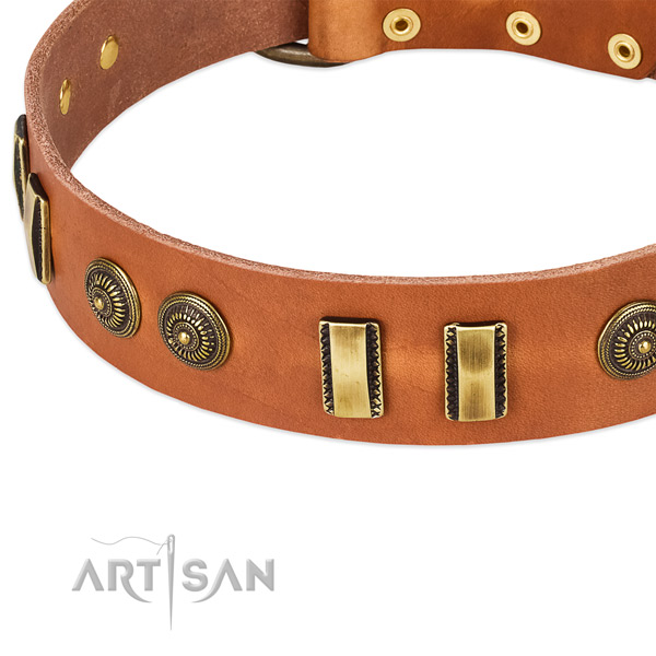 Reliable studs on full grain genuine leather dog collar for your dog