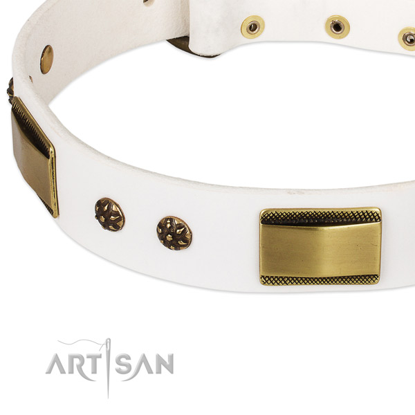 Rust-proof hardware on leather dog collar for your canine