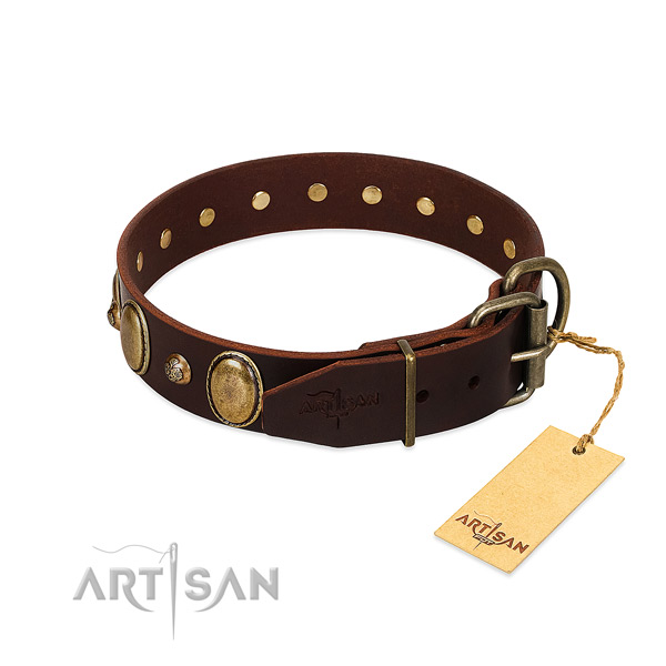 Durable hardware on leather collar for stylish walking your doggie