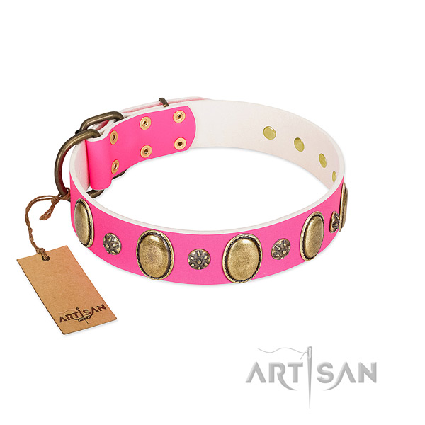 Reliable natural leather dog collar with corrosion resistant hardware