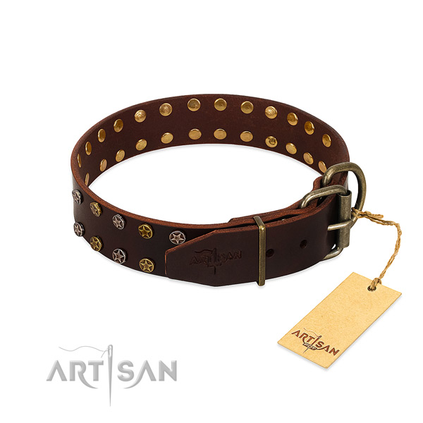 Fancy walking leather dog collar with awesome embellishments