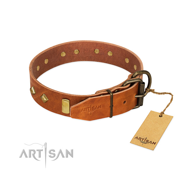 Comfortable wearing full grain leather dog collar with extraordinary studs