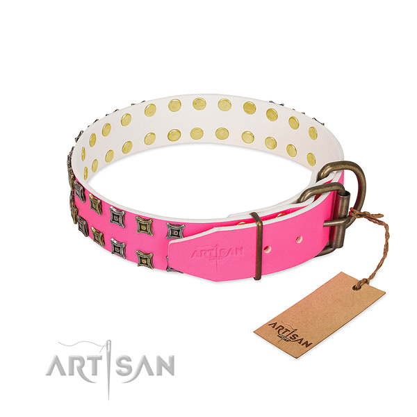 Full grain leather collar with exceptional embellishments for your four-legged friend
