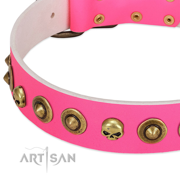 Extraordinary adornments on full grain genuine leather collar for your doggie