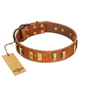 """Olive Slice"" FDT Artisan Tan Leather Mastiff Collar with Engraved and Smooth Plates"