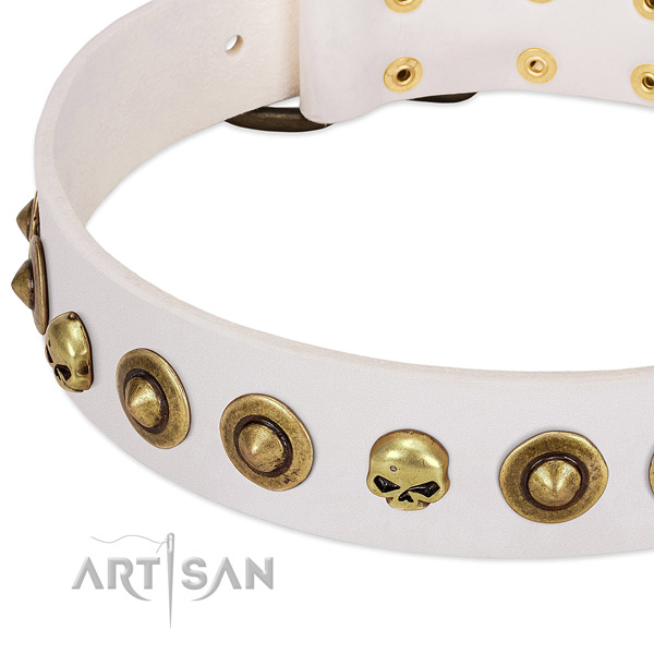Exquisite studs on full grain genuine leather collar for your four-legged friend