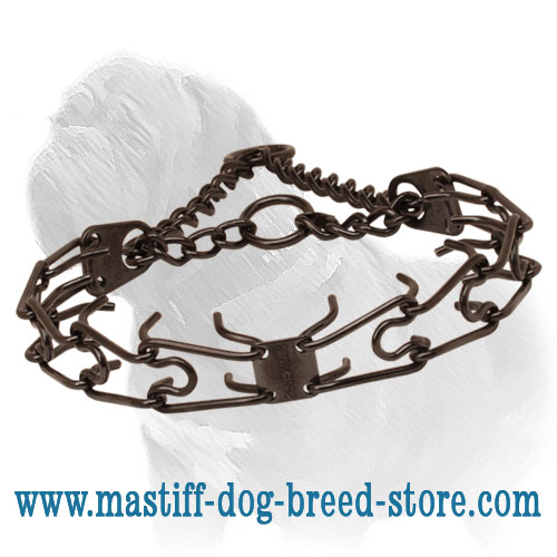Pinch collar of rust resistant black stainless steel for poorly behaved canines