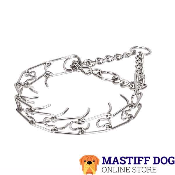Durable prong collar with stainless steel O-ring for attaching a leash
