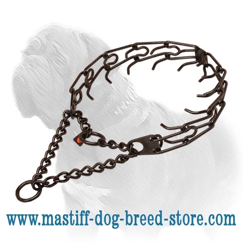 Prong collar of durable black stainless steel for badly behaved pets