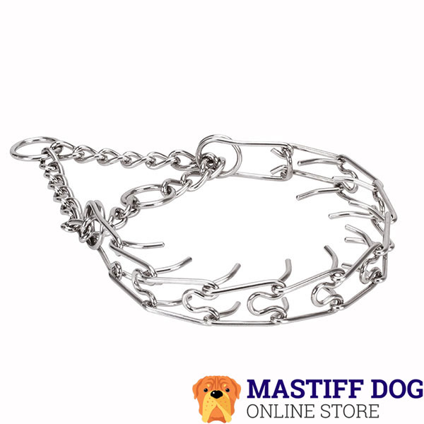 Prong collar of durable stainless steel for badly behaved pets