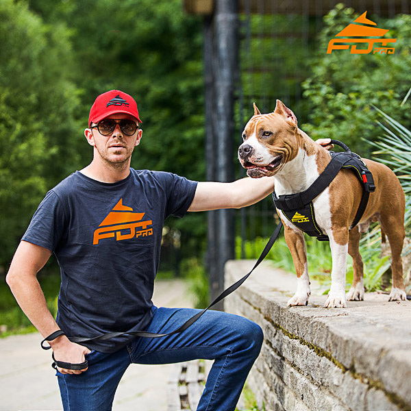 Men T-shirt of Fine Quality Cotton with Logo for Dog Training