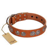 """Woofy Majesty"" FDT Artisan Tan Leather Mastiff Collar with Round Silver-like Plates"