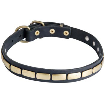 Walking Leather Collar with Brass Decoration for Mastiff