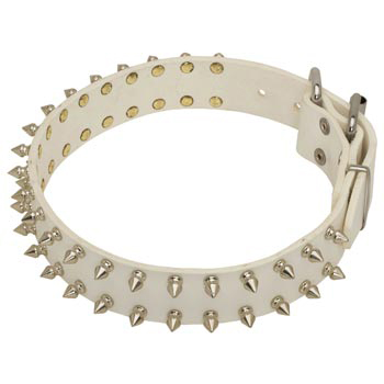 Spiked White Leather Collar for Mastiff Walking