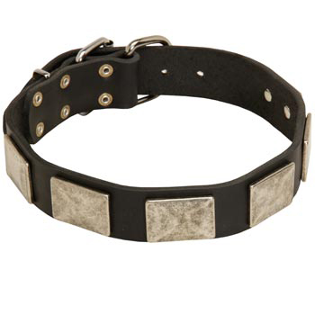 Walking Leather Mastiff Collar