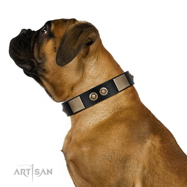 Rust resistant traditional buckle on genuine leather dog collar for everyday use