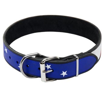 Mastiff Leather Collar With American  Flag Painting