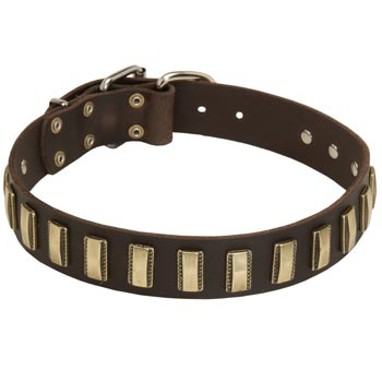 Leather Mastiff Collar Designer for Walking in Style