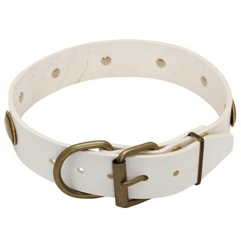 White Leather Dog Collar for Mastiff Stylish Walks