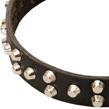Leather Mastiff Collar Durable Stud Decorated
