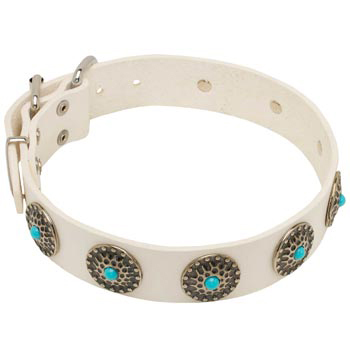 Leather Dog Collar White Exclusive for   Mastiff Walking