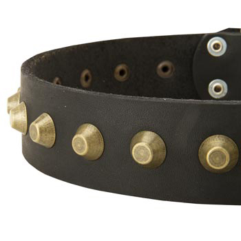 Leather Dog Collar with Brass Pyramids for Mastiff