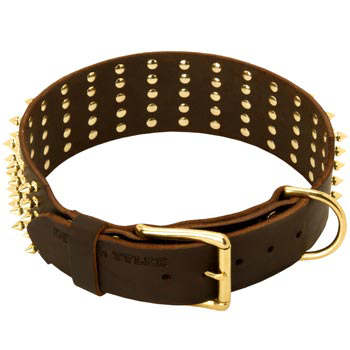 Leather Mastiff Collar with Solid Buckle and D-ring