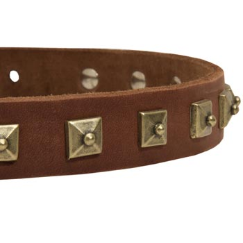 Mastiff Leather Collar With Square  Studs