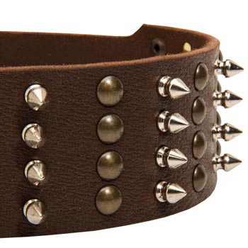 Mastiff Leather Collar with Rust-proof Fittings