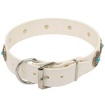 Leather   Mastiff Collar White Fancy for Dog Training, Walking