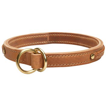 2 Ply Leather Choke Collar for Mastiff