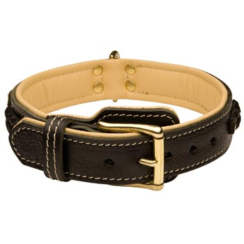 Mastiff Decorated  Leather Dog Collar