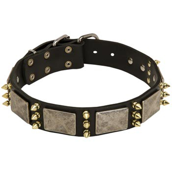 Vintage Leather Collar for Mastiff