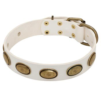 White Leather Mastiff Collar with Vintage Oval Plates