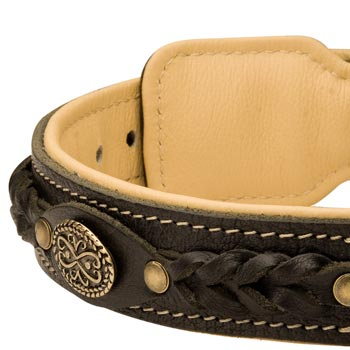 Leather Walking Fashion Collar for Mastiff