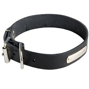 Leather Mastiff Collar for Identification