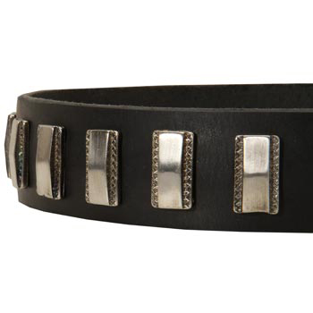 Stylish Leather Collar with Vintage Plates for Mastiff