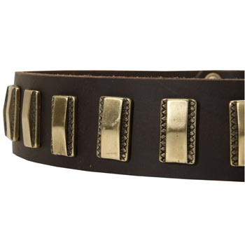Leather Dog Collar with Adornment for Mastiff