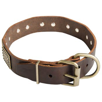 War-Style Leather Collar for Mastiff