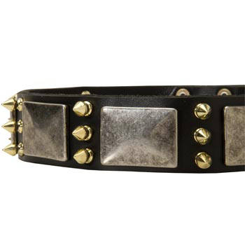 Stylish Leather Dog Collar for Mastiff