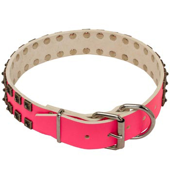Mastiff Pink Leather Collar for Walking She-Dogs