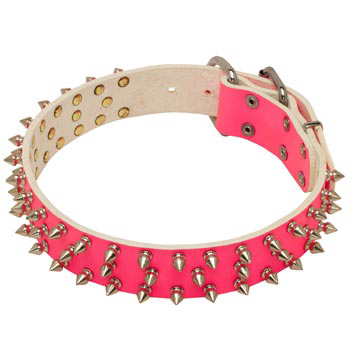 Pink Leather Collar for Mastiff She-Dogs
