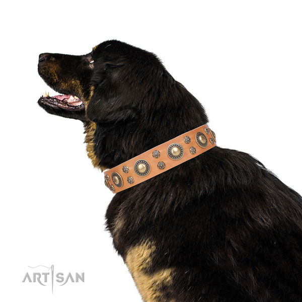 Everyday use embellished dog collar of fine quality material