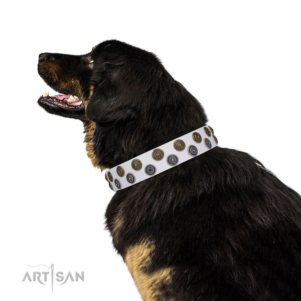 Stylish walking decorated dog collar of durable material